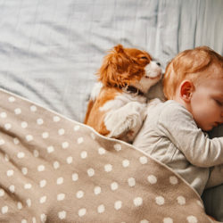 baby sleeping with dog