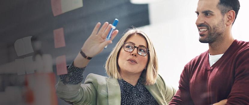 Employee Benefits from Alera